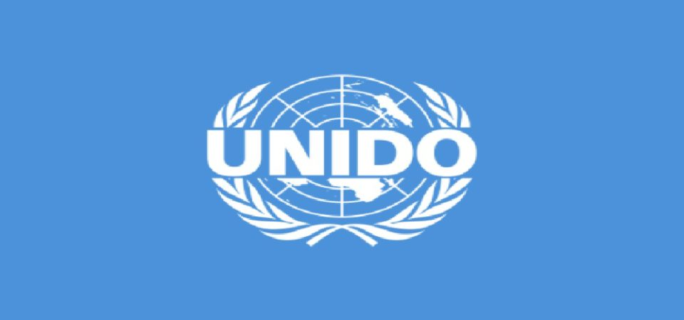 Only 20% Of Nigerian Small Businesses Survive – UNIDO