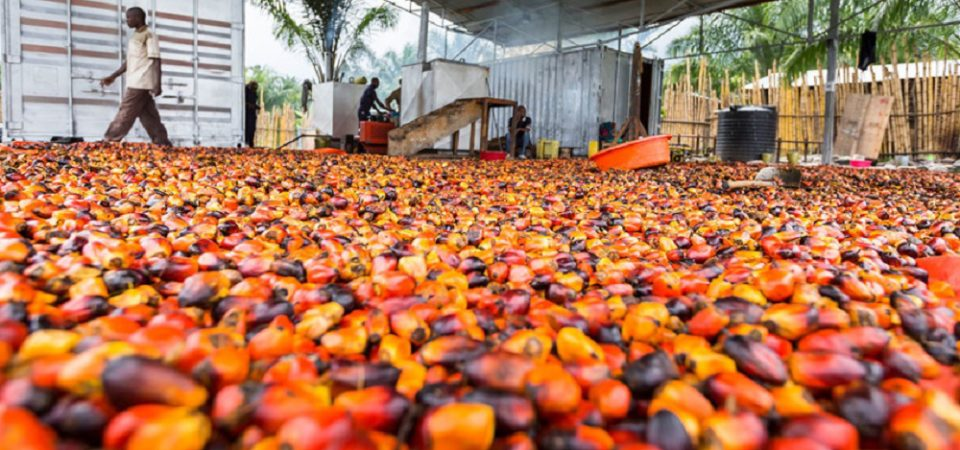 How Digital Technology Is Changing Farming in Africa – Harvard Business Review – Ndubuisi Ekekwe