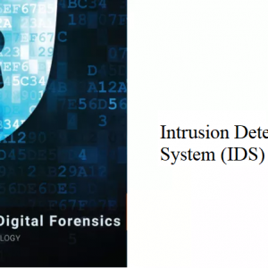11.0 – Intrusion Detection System (IDS)