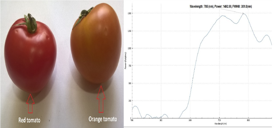 Design Data on Sensors to Classify Quality of Farm Produce