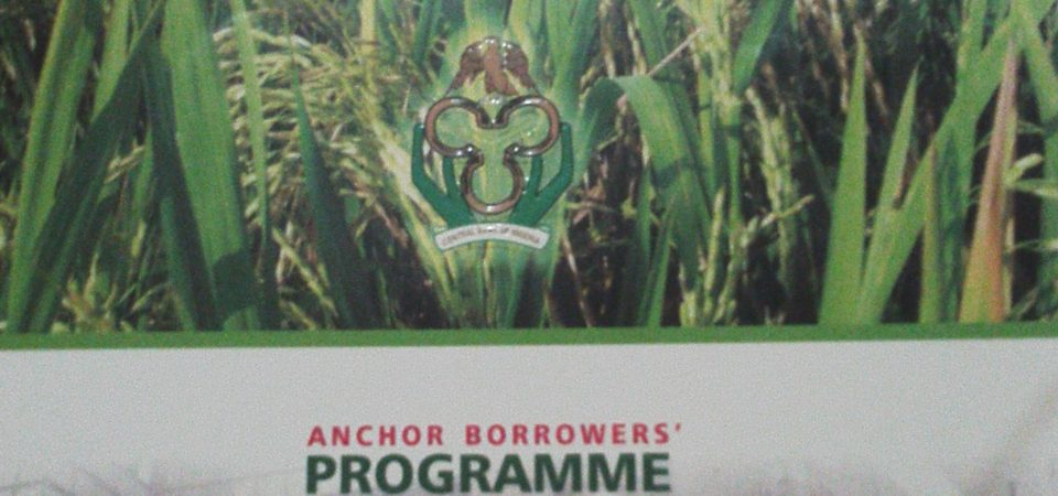 Nigerian Agro-Entrepreneurs, Read this CBN ABP Publication for Your Strategy