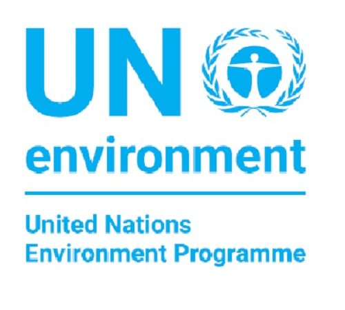 My Interview with United Nations Environment – Ndubuisi Ekekwe