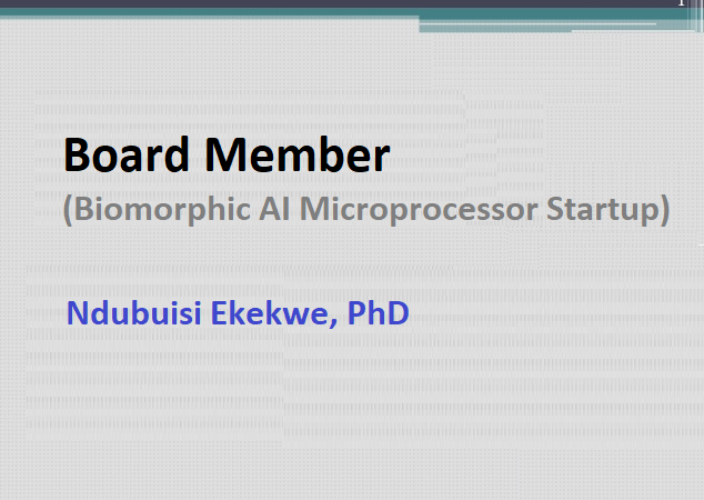 Joins Board of a Biomorphic AI Microprocessor Startup in California