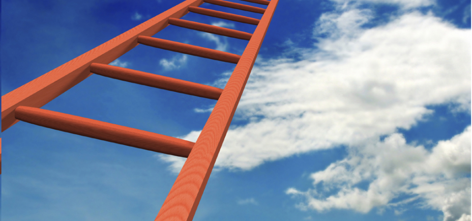 The Career Ladder – From Valley to Mountaintop