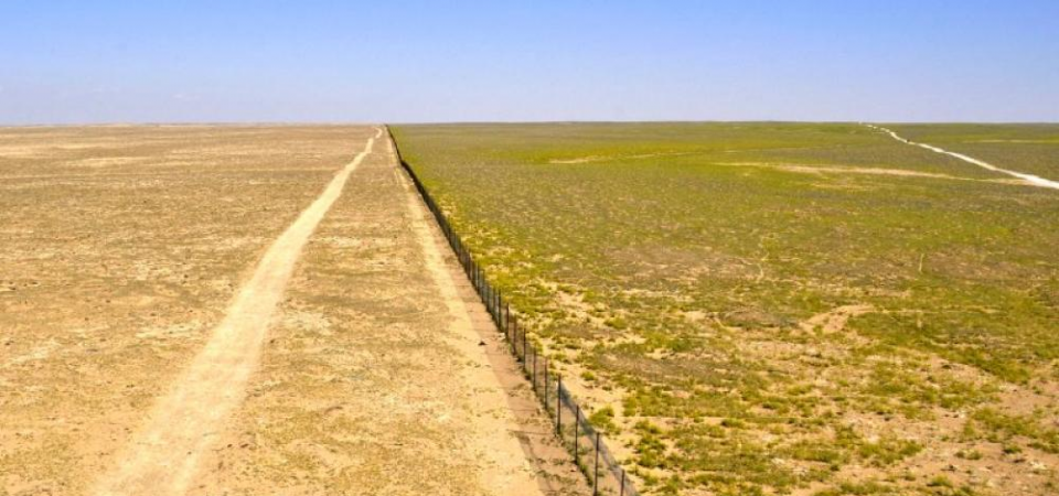 How Disruptive Technologies like Desert Control and Rewardn Can Solve Desertification in Northern Nigeria