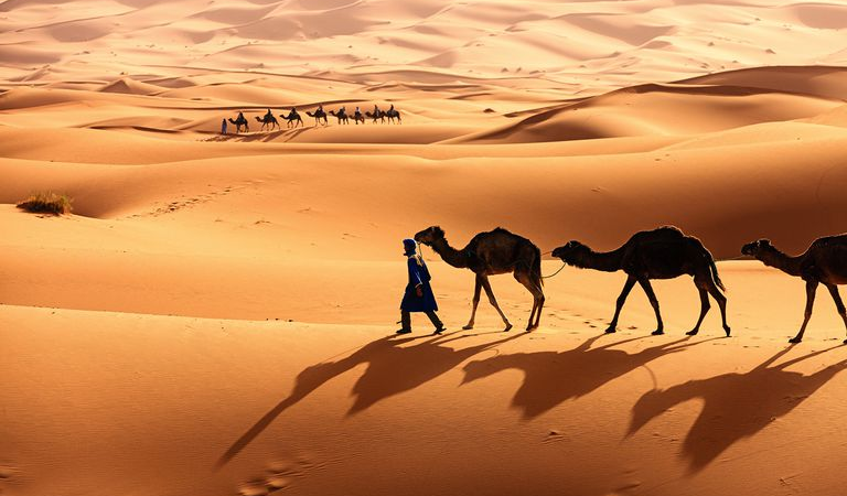 How to Sell Heating Appliances and Forest Mowers in Sahara Desert