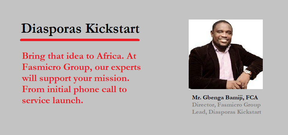African Diasporas Starting Businesses at Home, Connect for Support