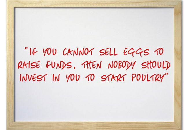 Are Your Eggs Selling?