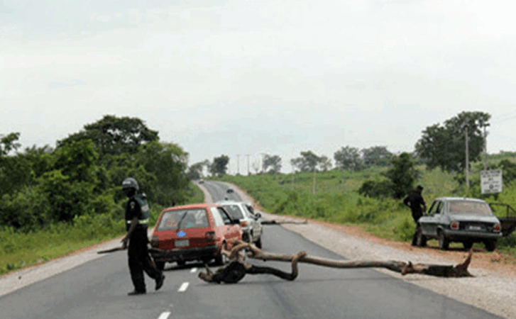 The Menace of Nigerian Police Road Blocks