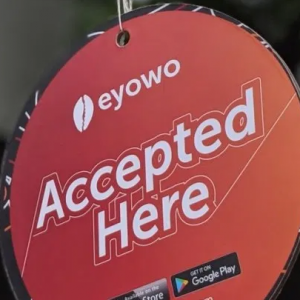 The Eyowo Mission To Deepen Financial Inclusion in Nigeria