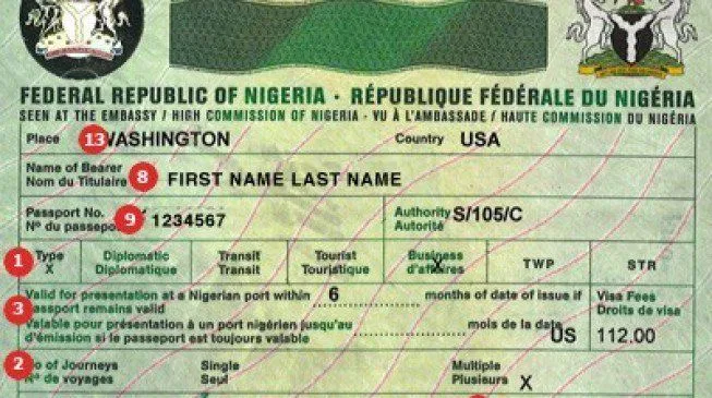 Nigeria to Issue Visas on Arrival to All African countries While the Borders Remain Closed
