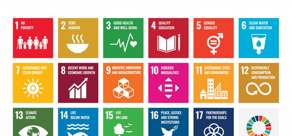 What Does It Take to Attain SDGs? Nigerian Professionals Asked and Discussed Suitable Ideas