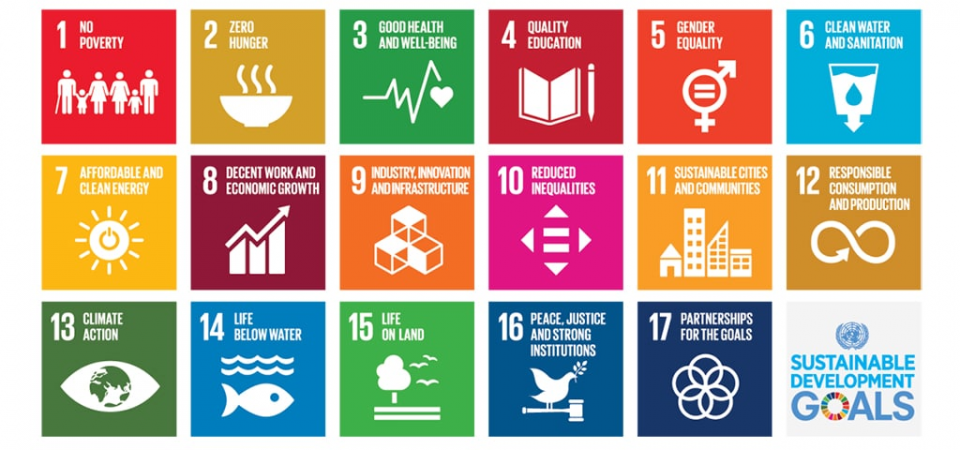 Sustainable Development Goals: 10 Facts to Change the World in the Next 10 Years of Action
