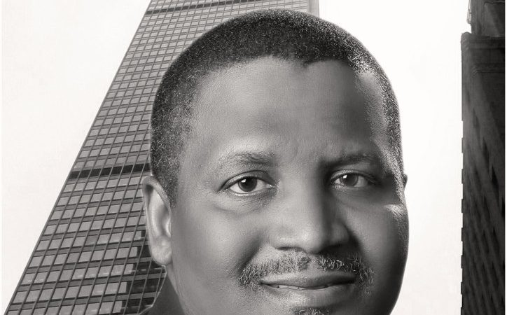 "My New Book, ""The Dangote System"", Is Coming Out in July"