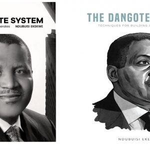 3.4 – The Dangote Insights