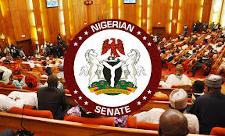 "A Senator Replies: ""How Can Nigeria Stabilize the Naira?"""