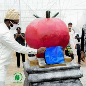 The WaVe City: FarmKonnect With Osun State Government Commissions A Multidimensional Vegetable Farming Project