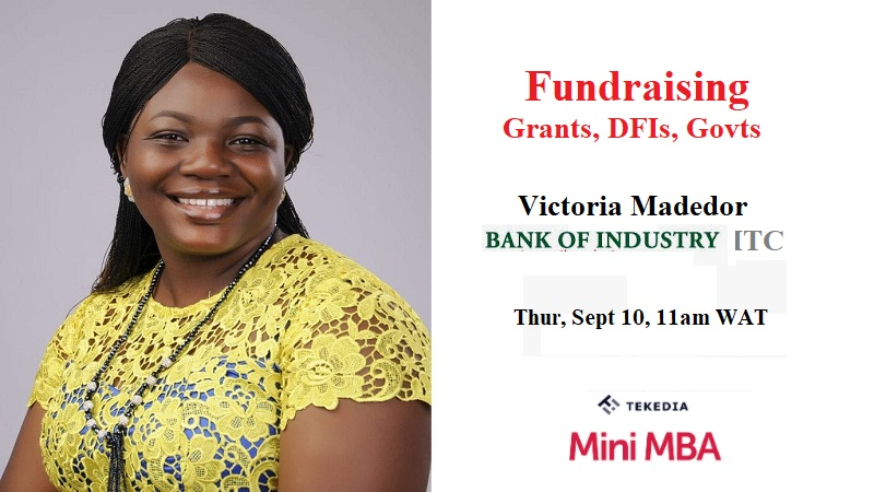 Join Fundraising from DFIs, Governments & Grants – Tekedia Live, Sept 10