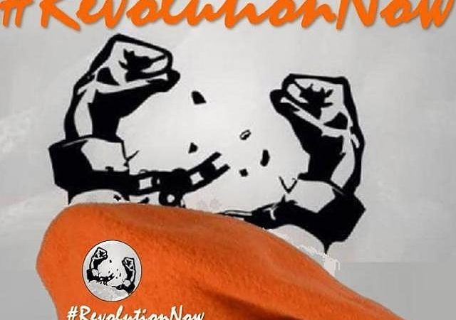 SPECIAL REPORT: A New Playbook for Conducting and Managing Revolution Protest in Nigeria