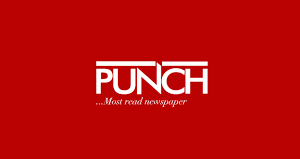 This is Not Journalism, The Punch: My Thugs Versus My Dogs in Senator Folarin's News Report