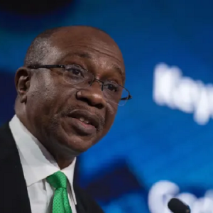The CBN's Dorm Account Statement And Losing A Battle With Nigeria's 1%