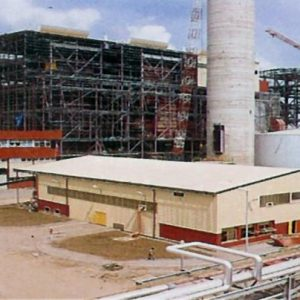 SPECIAL REPORT: Egbin Power Plant: Bringing Energy and Greenery to Life in Africa's Largest Economy