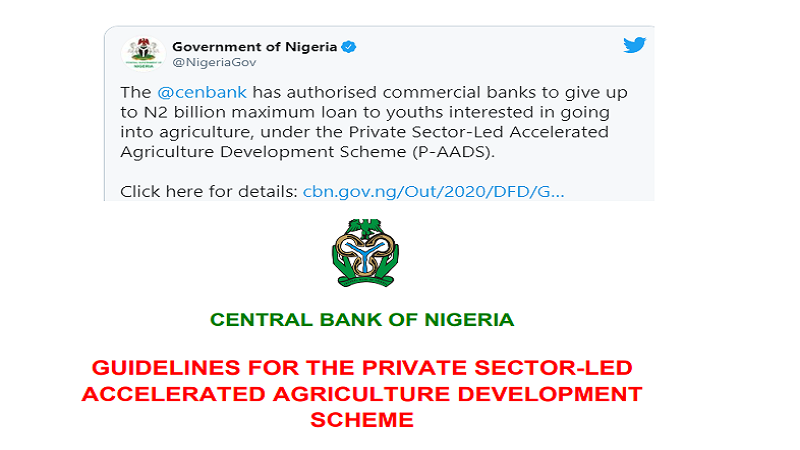 Central Bank of Nigeria Asks Banks To Grant $5.2 Million Loans to Youth Agro-businesses