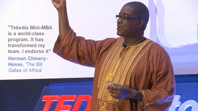 Tech Legend, Herman Chinery-Hesse, Endorses Tekedia MinI-MBA for African Youth [Video]