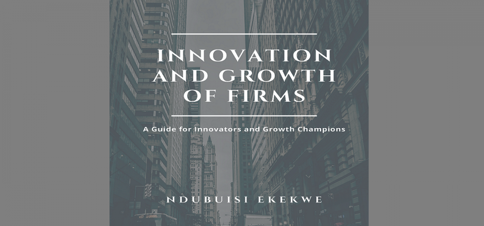 "My Upcoming Book – ""Innovation and Growth of Firms: A Guide for Innovators and Growth Champions"""