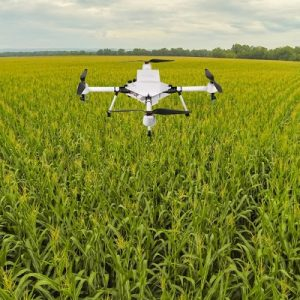 What Thrive Agric Means to Other Nigerian Agritech Brands