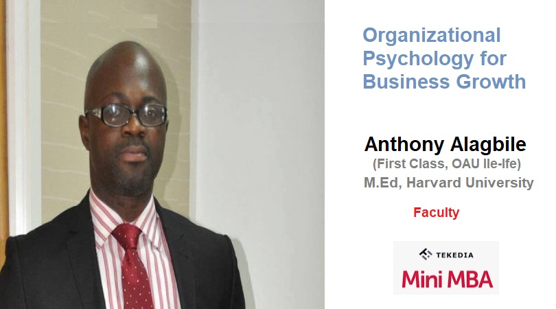 Organizational Psychology for Business Growth At Tekedia Institute