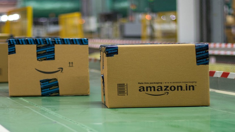 The Amazon India's Lesson for Nigeria
