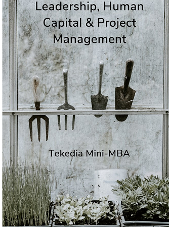 Leadership, Human Capital & Project Management At Tekedia Mini-MBA