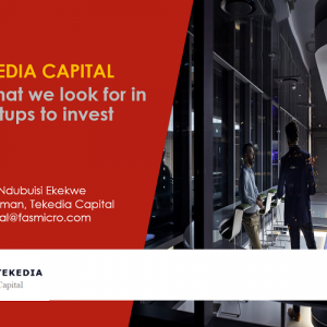TEKEDIA CAPITAL  – what we look for in startups to invest [video]