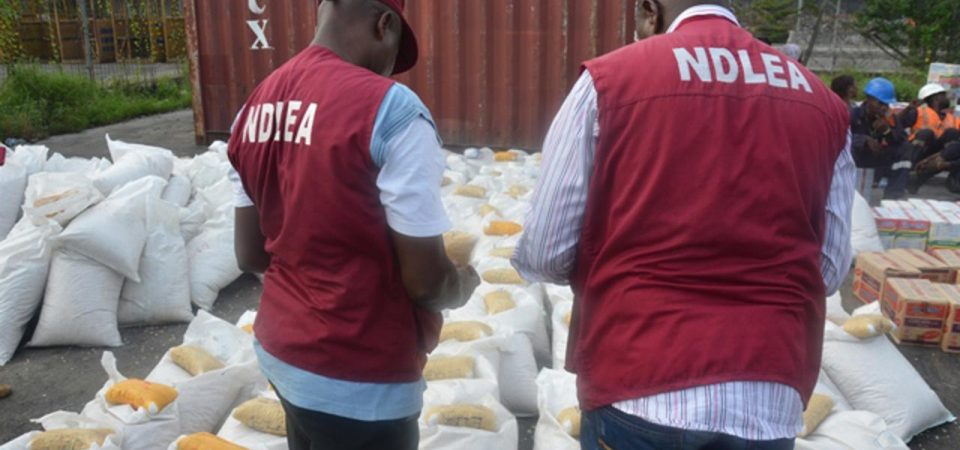 Towards the NDLEA Proposed Compulsory Drug Tests for Politicians and Students