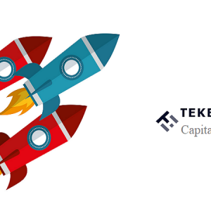 Tekedia Capital Deal Flow Has Been Posted for Oct 2021 Investment Cycle