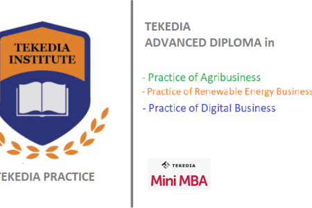 Overview of Tekedia Practice and the Tracks
