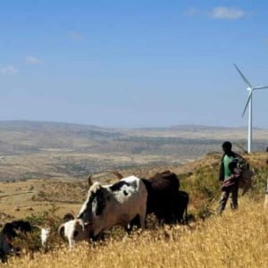 Renewable Energy And The Dilemma of Adoption for Underdeveloped Countries